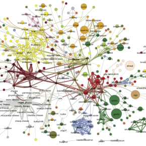The Flavor Network