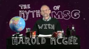 Chemophobia & The Myth ofMSG