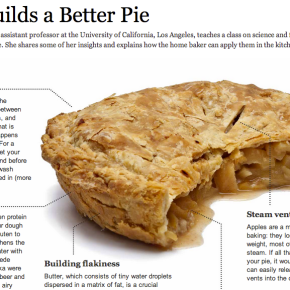 Pie Science & Fried Fish