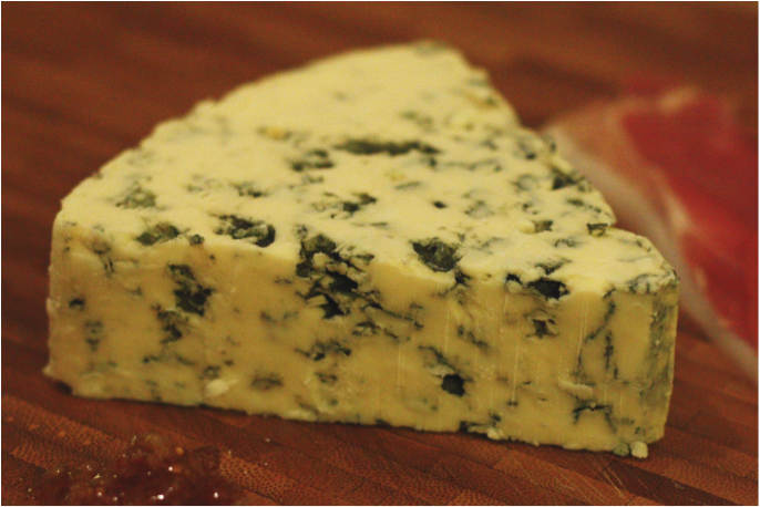 Human Cheese | scienceandfooducla