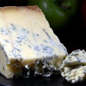Stilton Cheese & The HumanMicrobiome