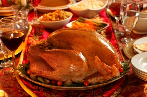 Thanksgiving Tips, Tricks, and DNA