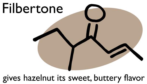 Filbertone_Hazelnut-02