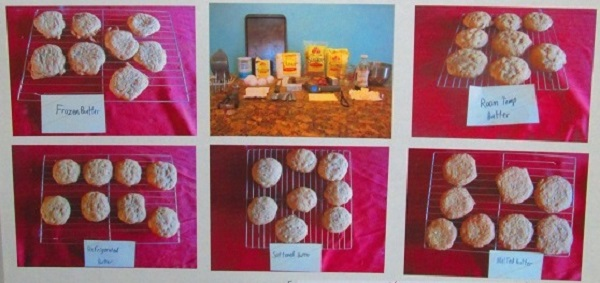 A close-up of Vincent's project. Note the number of cookies baked for each butter condition.