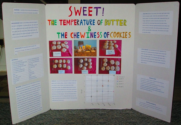 Vincent's winning science fair project.