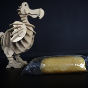 Deconstructing Twinkies & Sonicating GummiBears