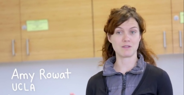 Rowat explains pie