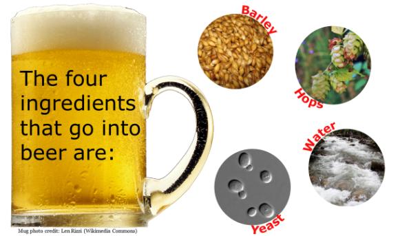 Fotm, beer slide 1