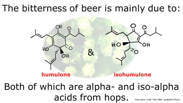 Fotm, beer slide 5
