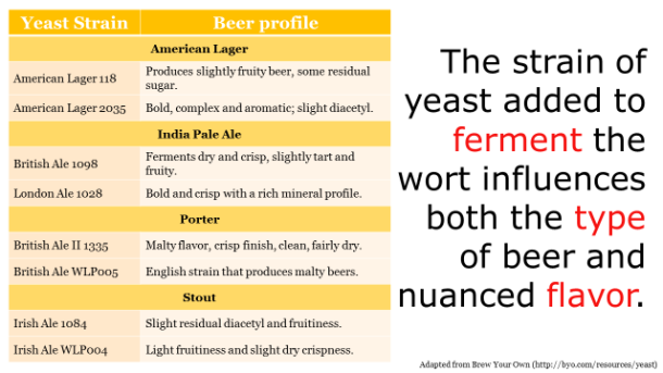 Fotm, beer slide 7