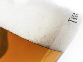 Beer Yeast &Flavor