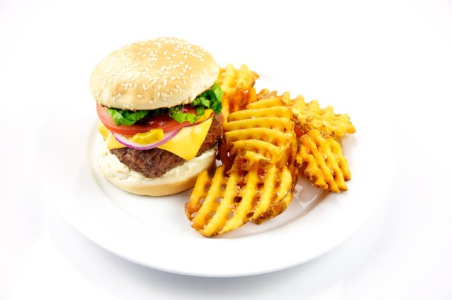 Cheeseburger with Fries [photo credit: TheCulinaryGeek]
