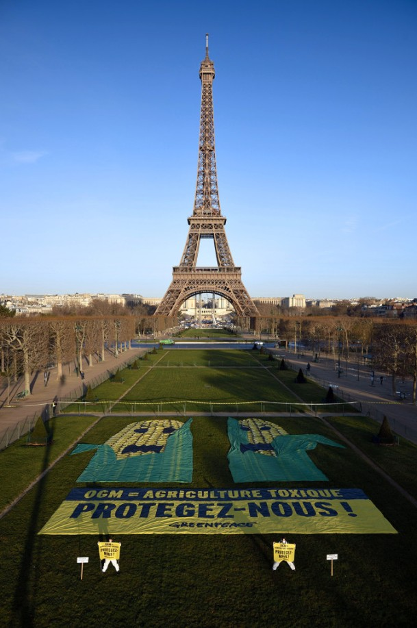"Greenpeace activists protest against a new genetically modified corn, US firm Pioneer's TC1507, on the Champs de Mars in Paris, in front of the Eiffel tower on February 12, 2014. The banner reads : ""Genetically modified organism = Toxic agriculture. Protect us !"". The genetically modified corn TC1507, won EU approval in controversial fashion on February 11, 2014 after a large majority of member states failed to block it. AFP PHOTO / ERIC FEFERBERG"