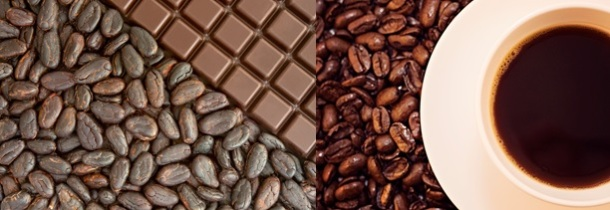 Figure 2: Chocolate (left) is made from Theobroma cacao, or cacao plant seeds and contains theobromine (PC: Nic Charalambous). Coffee (right) is made from Coffea Arabica, or coffee beans, and seeds and contains caffeine (Photo credit: JIhopgood/Flickr).