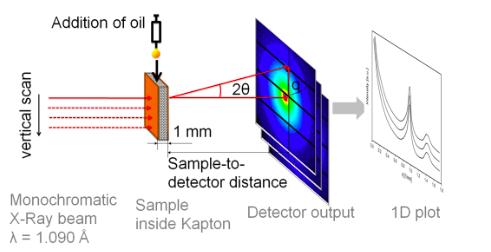 Sketch of the experimental setup - Reink et al