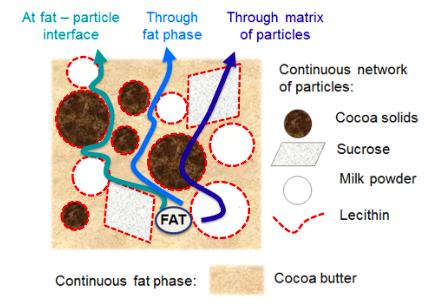 Possible lipid migration pathways in chocolate - Reinke et al