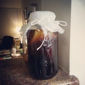 Kombucha Brewing: The Process