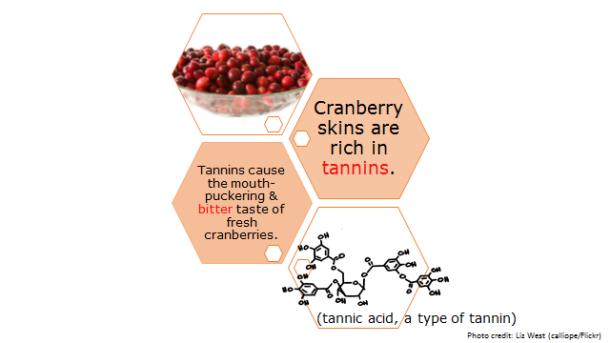Fotm, cranberry slide 4