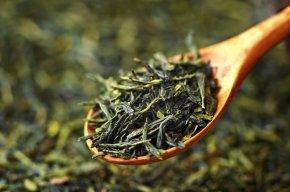 Ancient Tea & KombuchaAnswers
