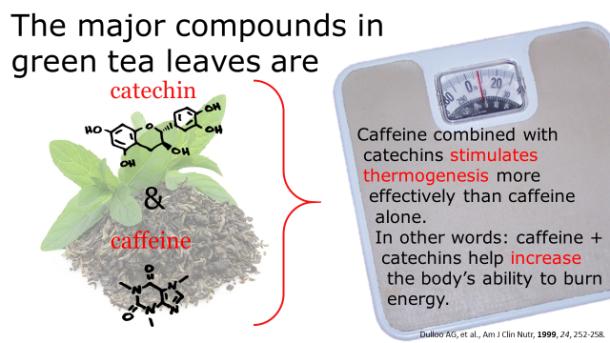 Fotm, Green tea slide 1