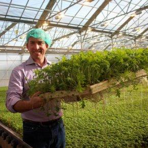 Winter Produce & WheatWars