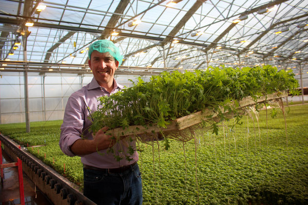 greenhouse-1_custom-7ffece11a778be00aed0c0f9e63b26e74b4b9a47-s600-c85