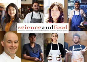 Science & Food 2017 Undergraduate Course