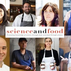 Science & Food 2017 UndergraduateCourse