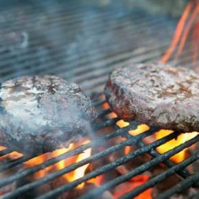 Burger Nanomaterials & Chicken-freeChicken